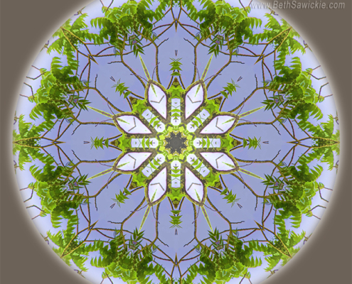 Green Leaves Mandala by Beth Sawickie http://www.BethSawickie.com/green-leaves-mandala