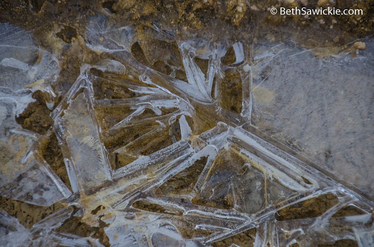 Ice on the dirt road by Beth Sawickie