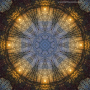 Nature's Skylight Mandala by Beth Sawickie