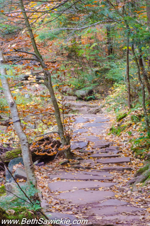 Glen Leigh Trail 1 at Ricketts Glen by Beth Sawickie http://bethsawickie.com/our-ricketts-glen-adventure
