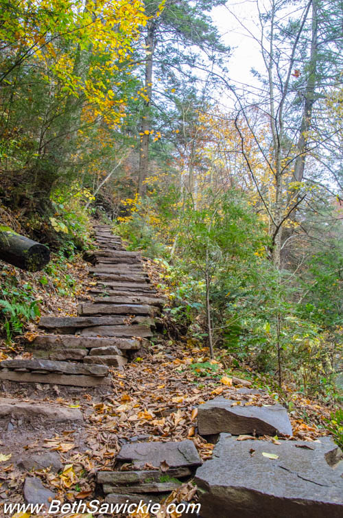 Stairs at Ricketts Glen, PA by Beth Sawickie http://bethsawickie.com/our-ricketts-glen-adventure/