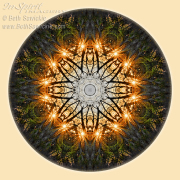 Starburst Through the Trees Mandala by Beth Sawickie http://www.bethsawickie.com/starburst-through-the-trees-mandala