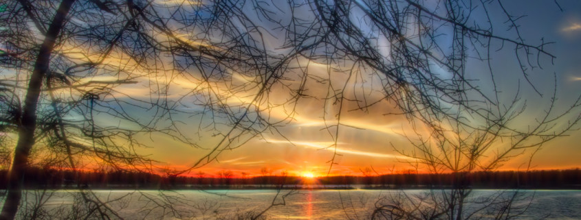 Sunset Framed by Branches by Beth Sawickie