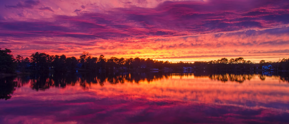 Color Explosion Sunset by Beth Sawickie