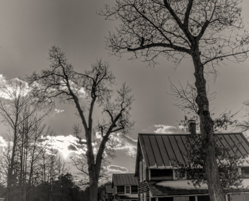 Whitesbog Worker's Houses in Winter by Beth Sawickie