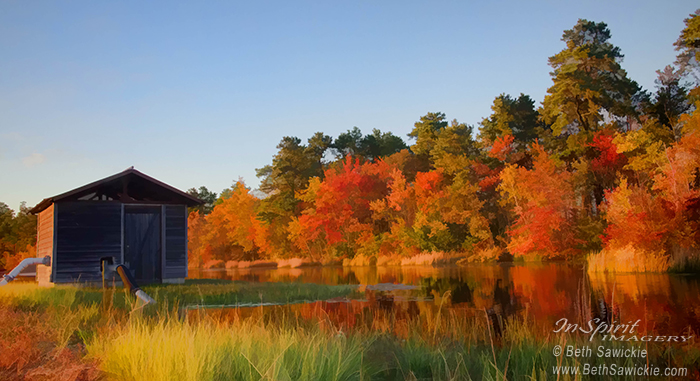 Autumn at the Bog by Beth Sawickie http://www.BethSawickie.com/autumn-at-the-bog