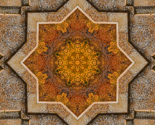 Windows to Autumn Mandala 2 by Beth Sawickie http://bethsawickie.com/windows-to-autumn-mandala-2