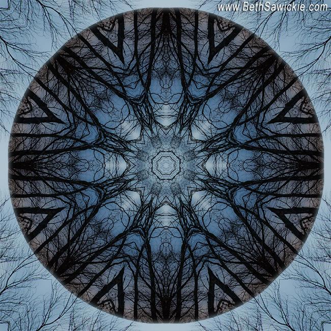 Winter Tree Mandala 3 by Beth Sawickie http://bethsawickie.com/winter-tree-mandala-3